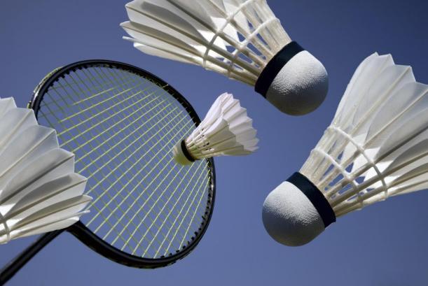Så skal der igen snakkes og besluttes vedrørende Badminton Sønderjylland.